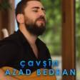 Azad Bedran - Çavşîn