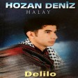 Hozan Deniz - Halay Delilo  2019