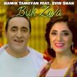 Hamik Tamoyan Feat.Evin Shah - Buk u Zava